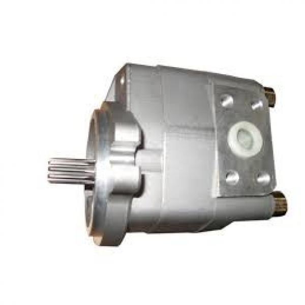07438-72202 Komatsu Gear Pump Προέλευση Ιαπωνίας #1 image